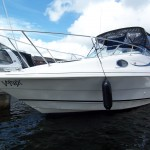 Rinker 240 For Sale